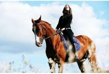 Neaizmirstama fotosesija ar zirgiem Viļņā