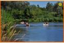 Relaksējošs un viegls kanoe brauciens un nakšņošana (kempinga mājiņa), līdz 4 personām: piemērots ģimenēm un draugu kompānijām
