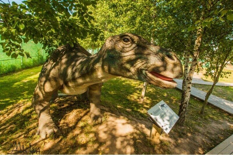 Atpūta Dino izklaides parkā un gardi kibinai 3 cilvēku ģimenei