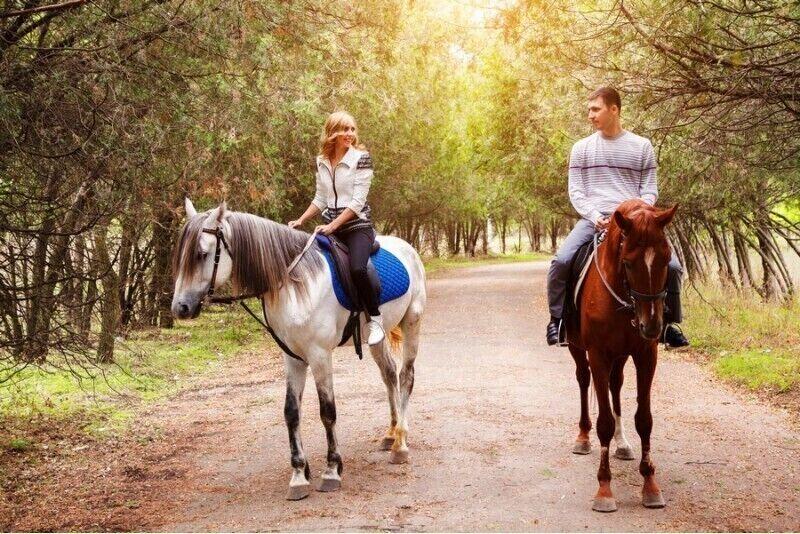 Верховая езда для двоих недалеко от Риги