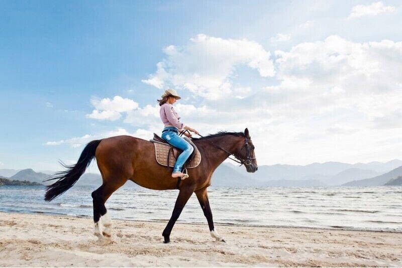 Jāšana ar zirgu pa pludmali
