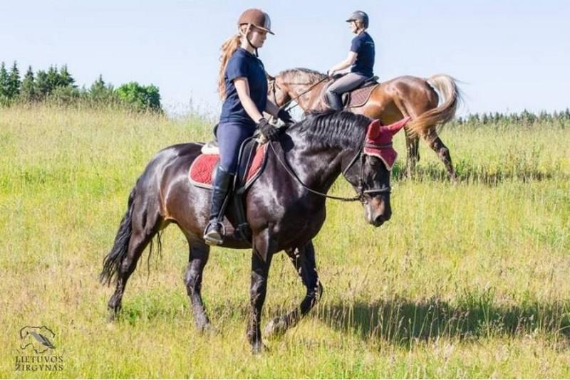 Izjāde ar zirgu Riešėje (1-3 cilvēki)