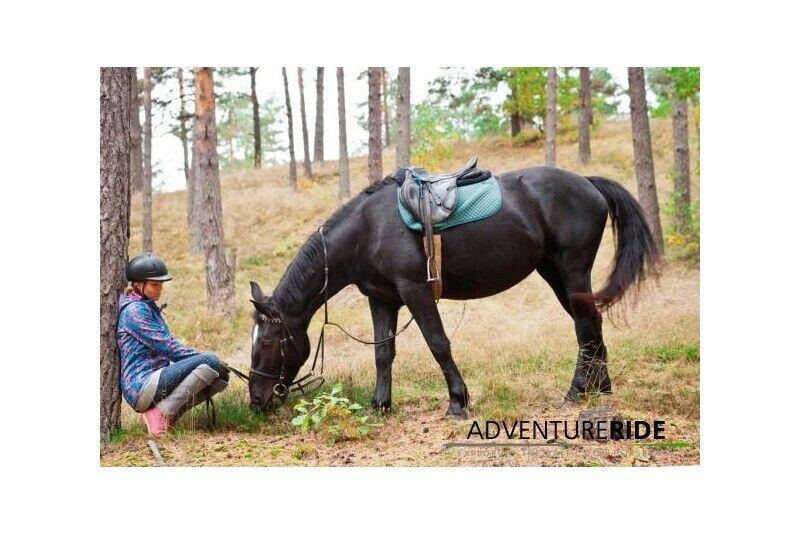 Jāšanas apmācība zirgu stallī Adventure Ride