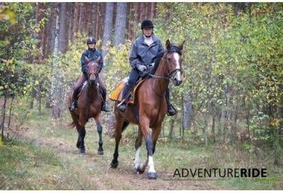 Поездка на лошадях для двоих в Адажи