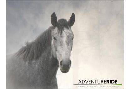 Верховая езда в красивом округе от конюшни Adventure Ride
