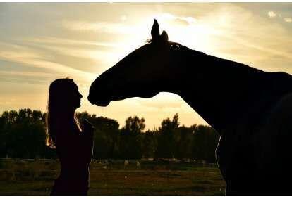 Izjāde ar zirgu  un fotosesija diviem