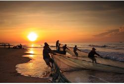 Võrkudega kalapüük Tallinna lahel