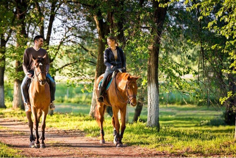 Zirgu izjādes diviem pa Anīkšču apkārtni