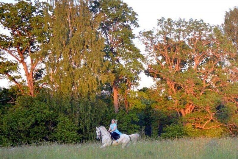 """Brauciens ar zirgiem """"Dabas vērotāji"""" Priekules novadā"""