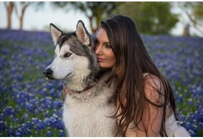 Pārgājiens ar kamanu suņiem - haskijiem Cecīļu dabas takā divām personām