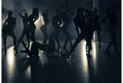 Privāta pole dance/private dance nodarbība draugu grupai