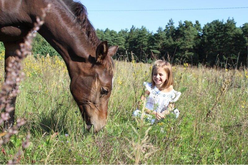 Izjāde ar zirgu 2 personām Katlkalnā