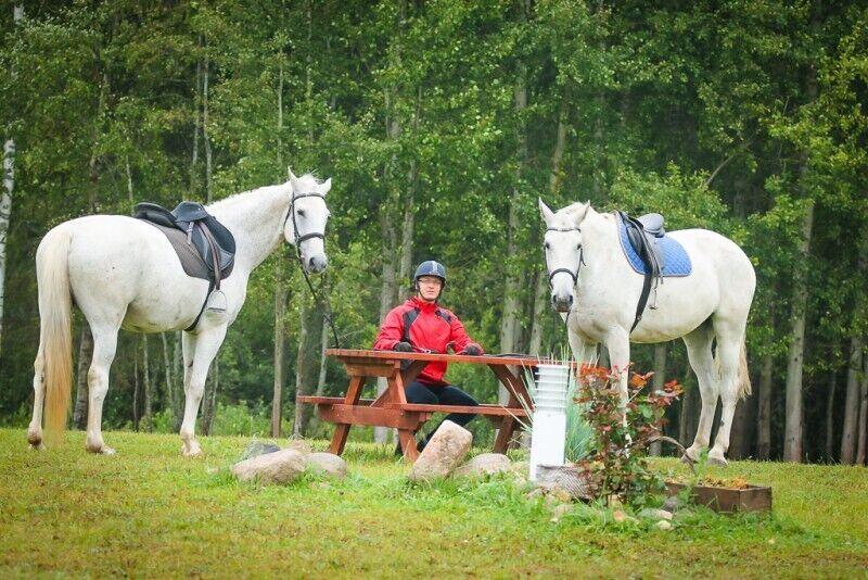 Верховая езда для двоих + обучение