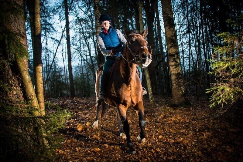 Pirmā izjāde ar zirgu vienai personai + apmācība